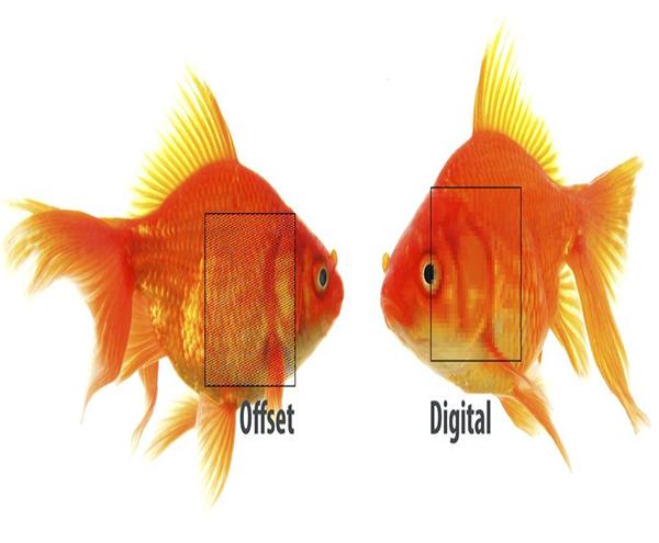 تفاوت چاپ دیجیتال و چاپ افست